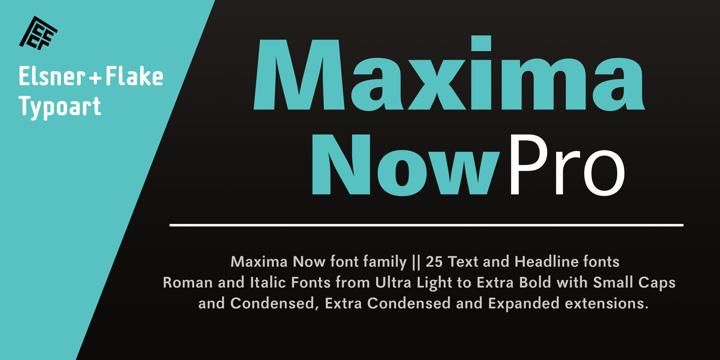 Maxima® Now Pro