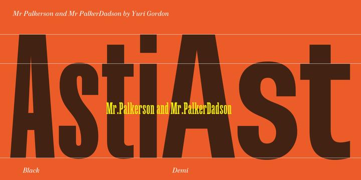 Mr Palker Dadson