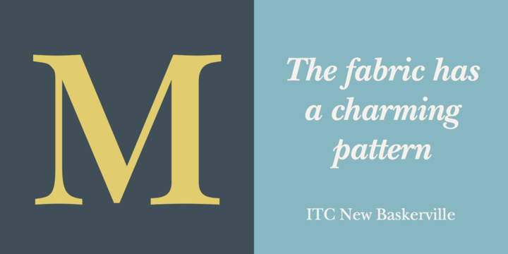 ITC New Baskerville® - Webfont & Desktop font « MyFonts