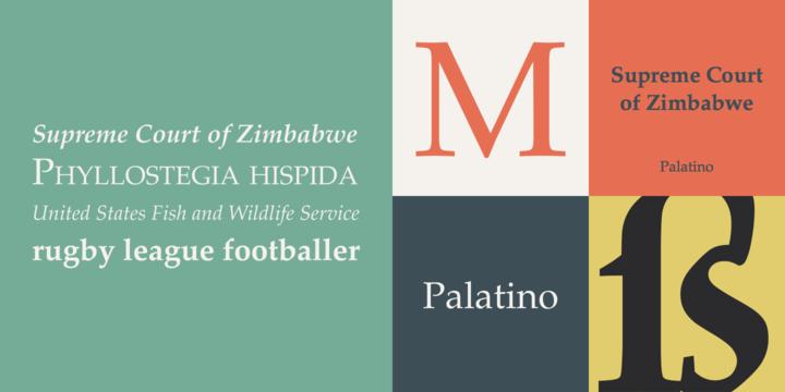 Palatino® - Webfont & Desktop font « MyFonts