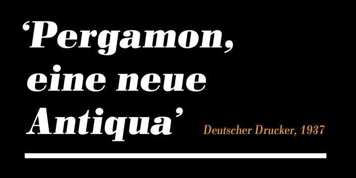 Pergamon™
