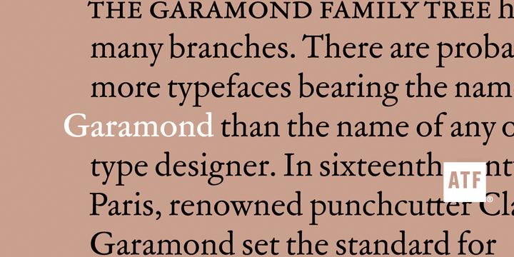 ATF Garamond   Desktop font   MyFonts