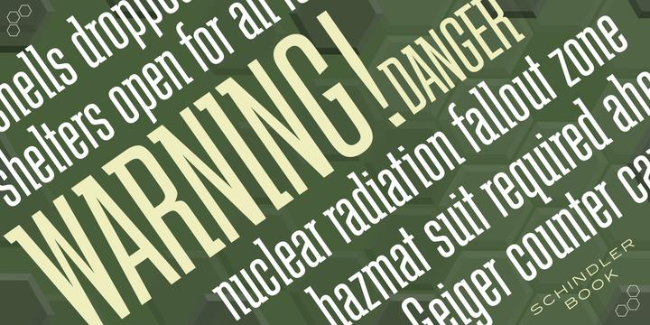 Schindler | Webfont & Desktop font | MyFonts