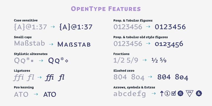 Magnetic Pro | Webfont & Desktop font | MyFonts