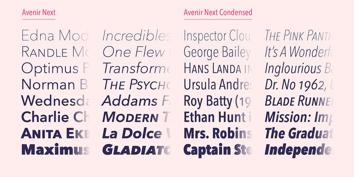 Avenir Next | Webfont & Desktop font | MyFonts