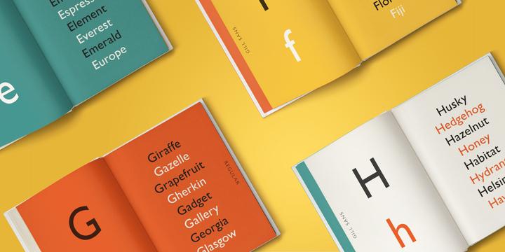 Gill Sans | Webfont & Desktop font | MyFonts