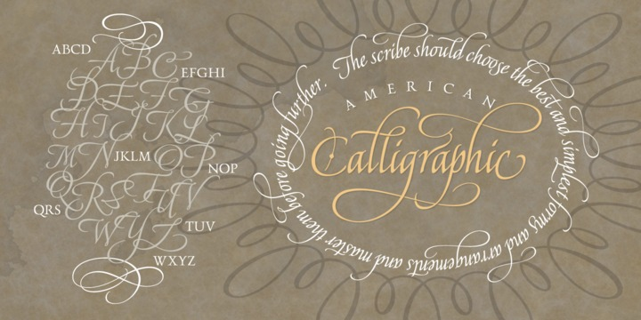 Hot Fonts Download American Calligraphic Font