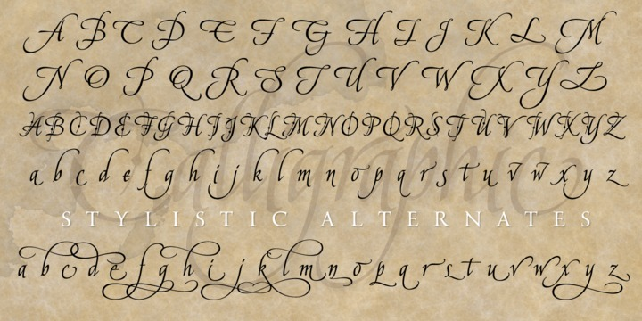 Download American Calligraphic Font What The Fonts