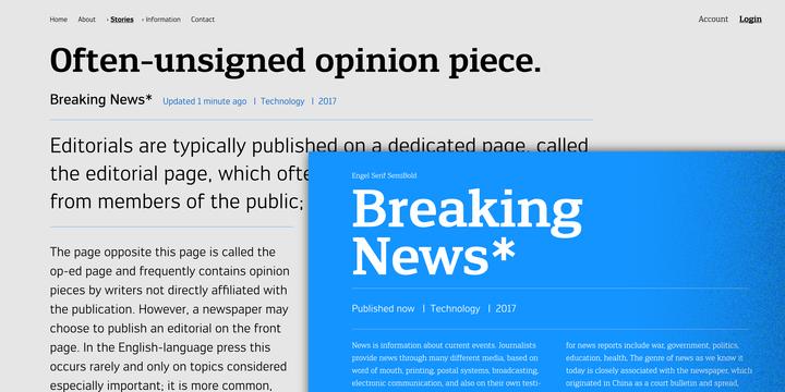 Engel New   Webfont & Desktop font   MyFonts