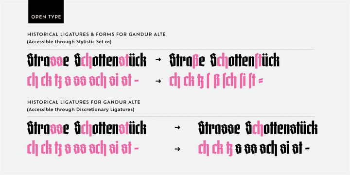 Gandur Alte | Webfont & Desktop font | MyFonts