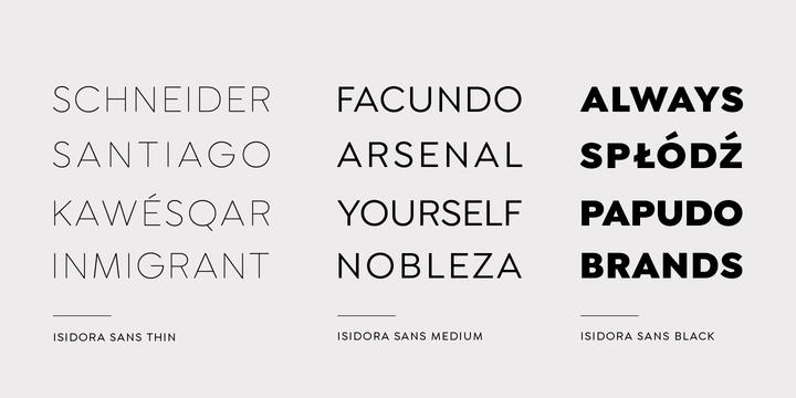 Isidora Sans   Webfont & Desktop font   MyFonts