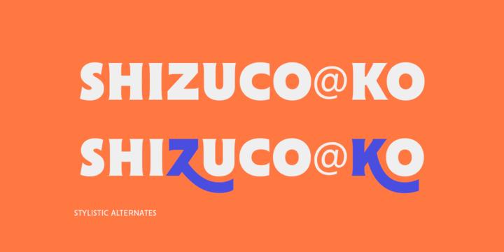 Cenzo Flare | Webfont & Desktop font | MyFonts