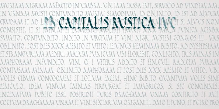 PB Capitalis Rustica IVc