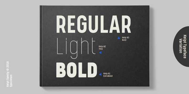 Kelpt | Webfont & Desktop font | MyFonts