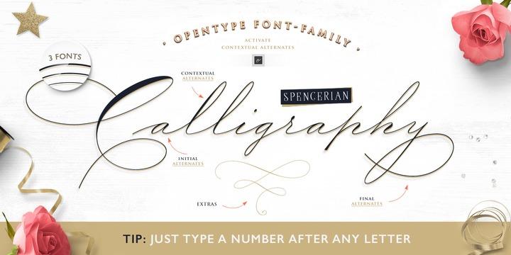 Wedding Scripts Fonts.The Wedding Script Webfont Desktop Font Myfonts