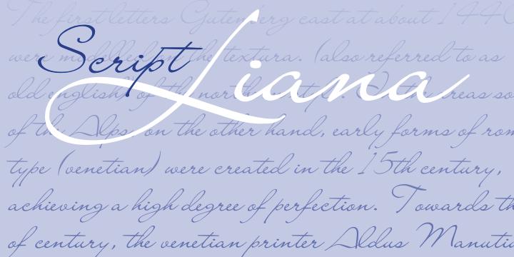 Lettertype 28248