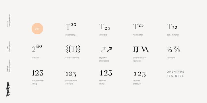 TT Tsars | Webfont & Desktop font | MyFonts