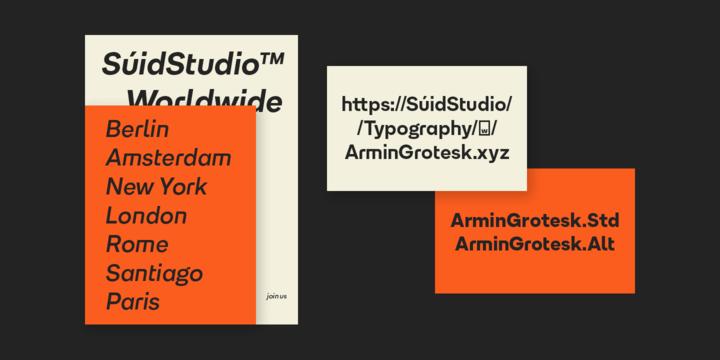 Armin Grotesk   Webfont & Desktop font   MyFonts