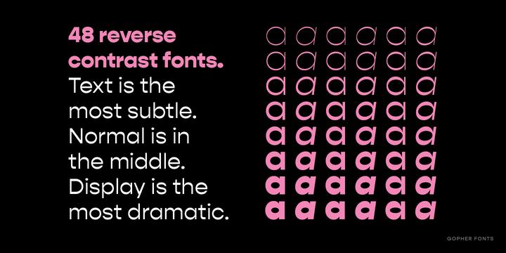 Gopher | Webfont & Desktop font | MyFonts