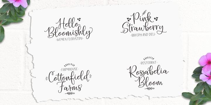 Hello Blushberry Script | Webfont & Desktop font | MyFonts
