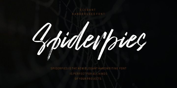 Download Spiderpies Font Family From Lucky Type