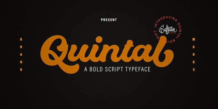 Download Quintal Script Font Family From Saffatin co