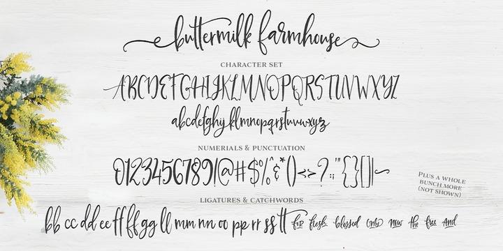 Buttermilk Farmhouse | Webfont & Desktop font | MyFonts