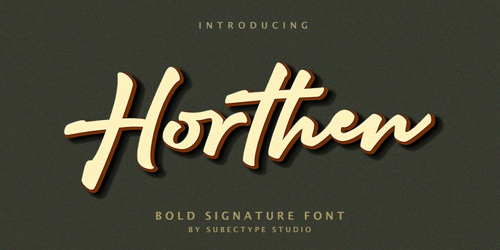 Download Horthen Font Family From Subectype