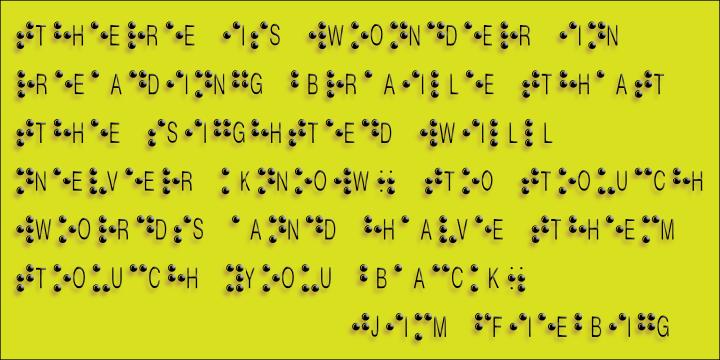 Braille Alpha Webfont Amp Desktop Font Myfonts