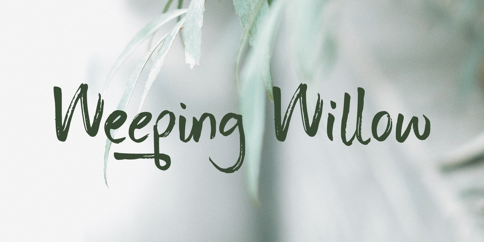 Weeping Willow font page