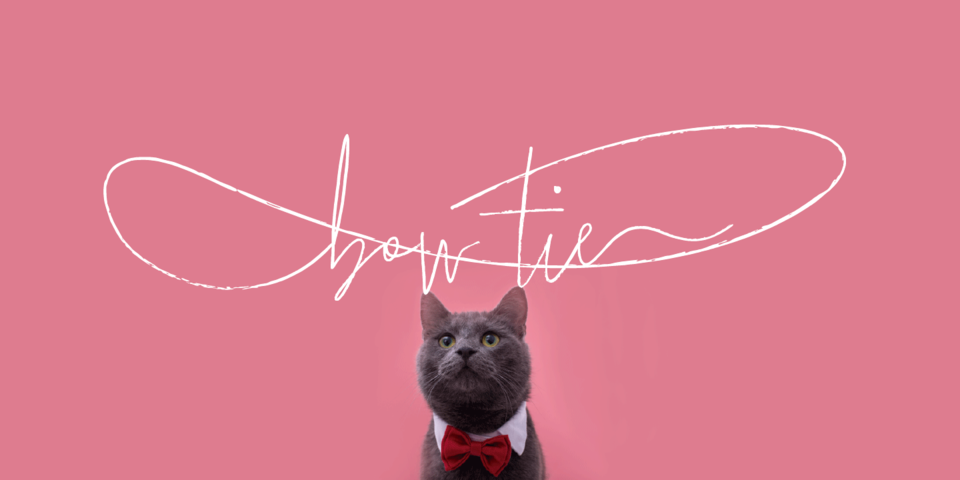 Bow Tie font page