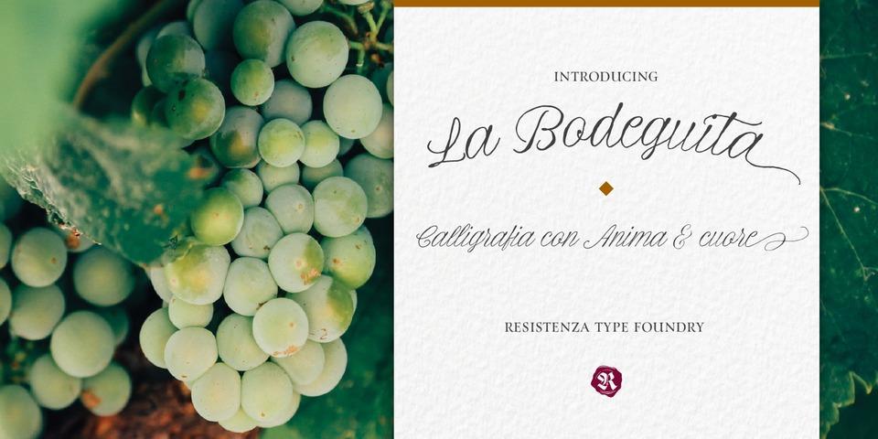 La Bodeguita font page