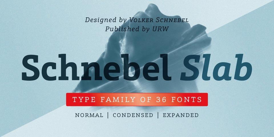 Schnebel Slab Pro font page