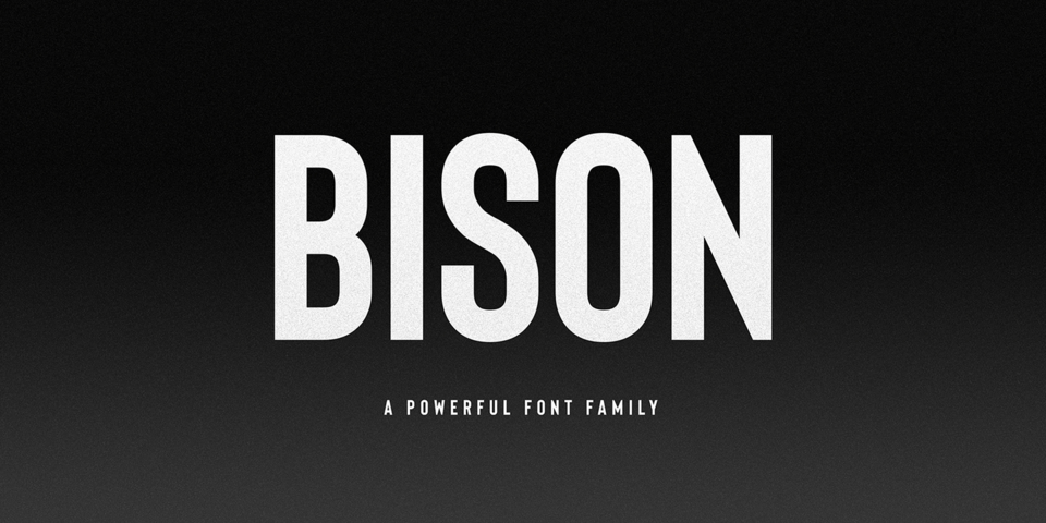 Bison font page