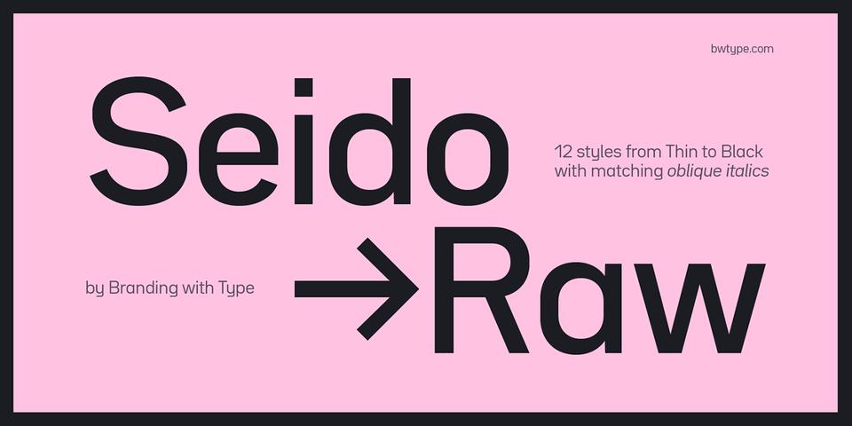 Bw Seido Raw font page