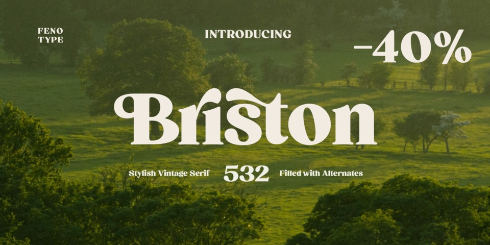 Special offer on Briston