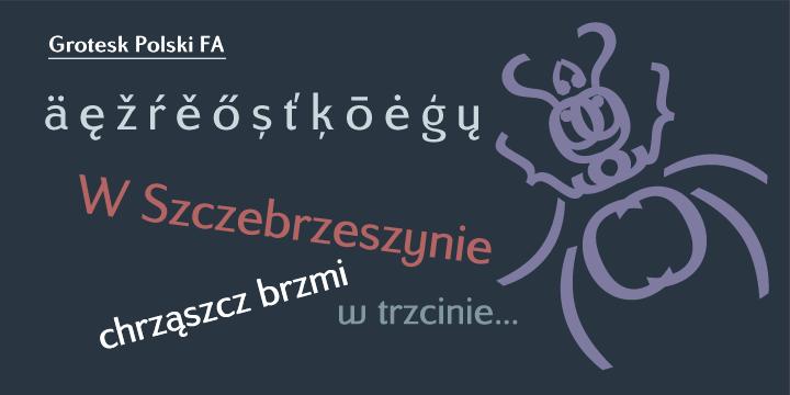 Grotesk fonts - Urban Fonts