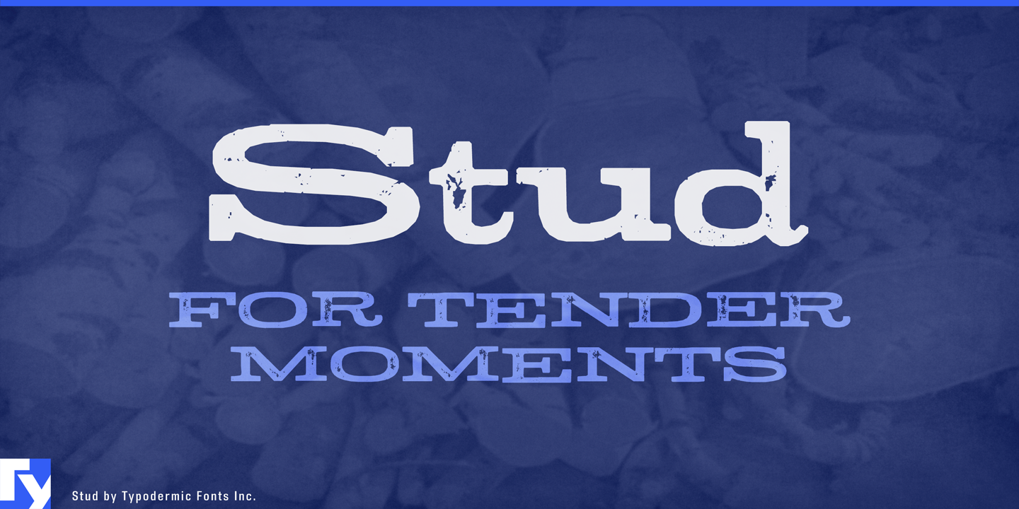 Best sellers premium fonts page 248 urban fonts - Stud By Typodermic Category Decorative