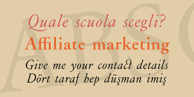 Best sellers premium fonts page 248 urban fonts -  Flanker Garaldus Flanker Garaldus