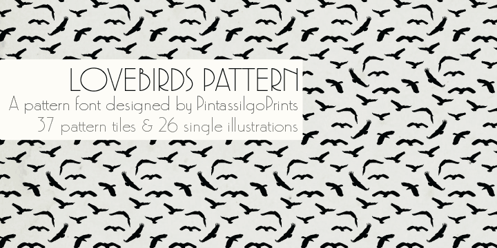 Love Birds Pattern