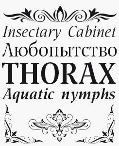 Nat Flight font sample