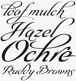 Olidia font sample