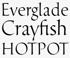 Davanti font sample
