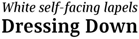Saya Serif FY Font Sample