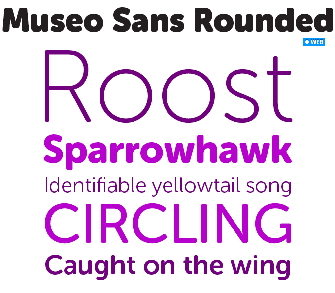 Museo Sans Rounded font sample