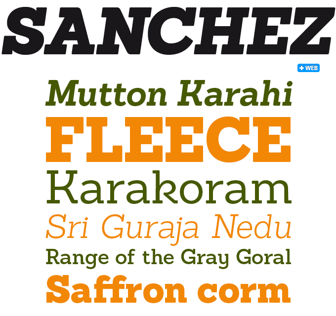 Sanchez font sample
