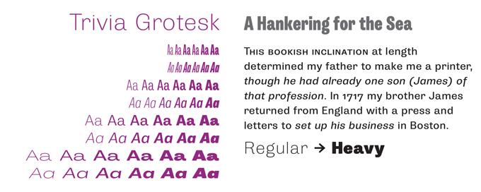 Trivia Grotesk font sample