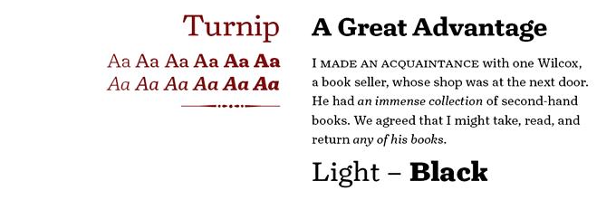 Turnip font sample