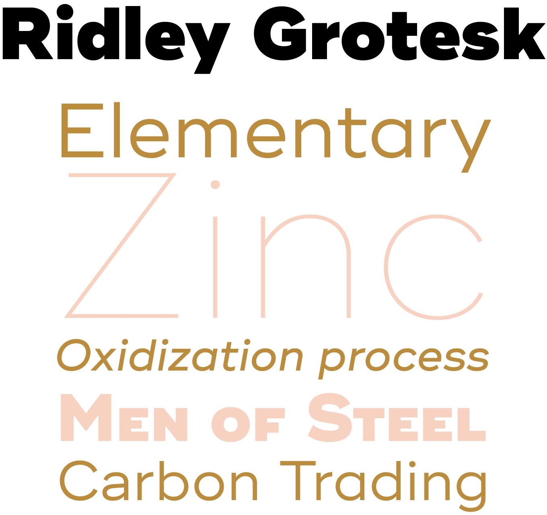 Ridley Grotesk Font Sample
