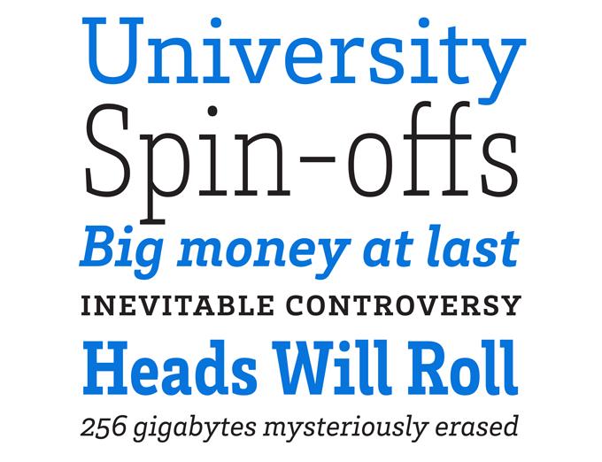 Myfonts most popular fonts of 2012 brix slab font sample altavistaventures Gallery